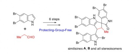 48. Shi, L.; Li, L.; Wang, J.; Huang, B.; Zeng, K.; Jin, H. Zhang, Q.; Jia, Y. Total synthesis of natural spiro-trisindole enantiomers similisines A, B and their stereoisomers. Tetrahedron Lett. 2017, 58(20), 1934-1938.