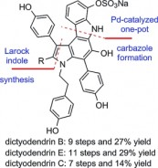 32. Tao, P.; Liang, J.; Jia, Y., Total Synthesis of Dictyodendrins B and E, and Formal Synthesis of Dictyodendrin C. European Journal of Organic Chemistry 2014, 2014, (26), 5735-5748.