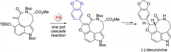 38. Zhang, F.; Guo, L.; Hu, W.; Jia, Y., Total synthesis of (−)-decursivine and analogues via cascade sequence. Tetrahedron 2015, 71, (22), 3756-3762.