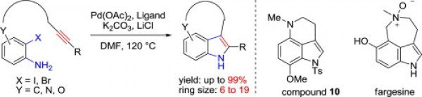 29. Gao, Y.; Shan, D.; Jia, Y., Intramolecular Larock indole synthesis for the preparation of tricyclic indoles and its application in the synthesis of tetrahydropyrroloquinoline and fargesine. Tetrahedron 2014, 70, (34), 5136-5141.