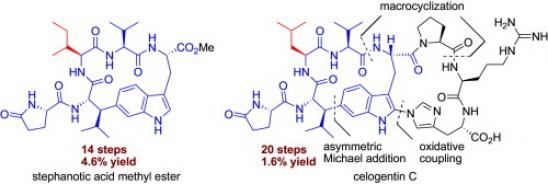 28. Li, L.; Hu, W.; Jia, Y., Synthetic studies of cyclic peptides stephanotic acid methyl ester, celogentin C, and moroidin. Tetrahedron 2014, 70, (42), 7753-7762.