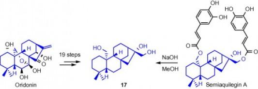 6. Jing Li, Y. J. Q. L., Formal synthesis of semiaquilegin A. Tetrahedron Lett 2010, 51, (7), 1121-1123.