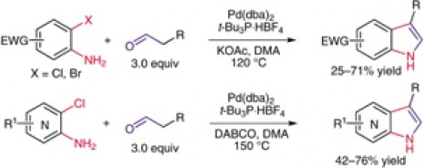 1. Palladium-Catalyzed Indole and Azaindole Synthesis by Direct Annulation of Electron-Poor o-Chloroanilines and o-Chloroaminopyridines with Aldehydes. Synthesis 2008, 2008, (24), 3981-3987.