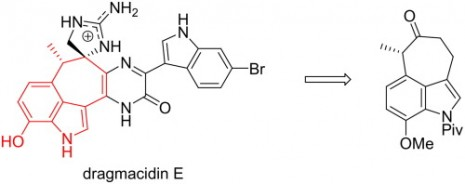 27. Bin Wang, H. Q. F. Z., Synthesis of the cycloheptannelated indole fragment of dragmacidin E. Tetrahedron Letters 2014, 55, (9), 1561-1563.