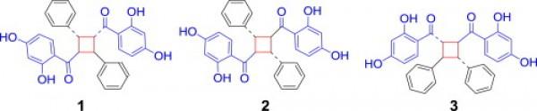 21. Oxyfadichalcones A–C: three chalcone dimers fused through a cyclobutane ring from Tibetan medicine Oxytropis falcata Bunge. Tetrahedron 2013, 69, (52), 11074-11079.