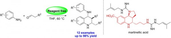 19. Rong, Z.; Li, Q.; Lin, W.; Jia, Y., Reagent-free synthesis of 2,3,4-polysubstituted tetrahydroquinolines: application to the formal synthesis of (±)-martinellic acid and martinelline. Tetrahedron Letters 2013, 54, (33), 4432-4434.