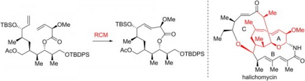20. Shiyong Mao, Y. J., Construction of the A ring of halichomycin via a RCM strategy. Tetrahedron Lett 2013, 54, (32), 4343-4345.