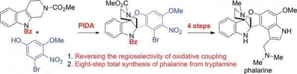 55. L. Li, K. Yuan, Q. Jia, Y. Jia, Eight‐Step Total Synthesis of Phalarine by Bioinspired Oxidative Coupling of Indole and Phenol, Angew. Chem. Int. Ed. 2019, 58, 6074.