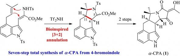 59. Shibin Shi, Kuo Yuan, Yanxing Jia. Seven-step total synthesis of α-cyclopiazonic acid. Chin. Chem. Lett. 2019, https://doi.org/10.1016/j.cclet.2019.06.048