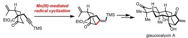61. Total Synthesis of (-)-Glaucocalyxin A, Jiuzhou Guo, Bo Li, Weihao Ma, Mallesham Pitchakuntla, Yanxing Jia, Angew. Chem. Int. Ed. 2020, 59, 1 – 5